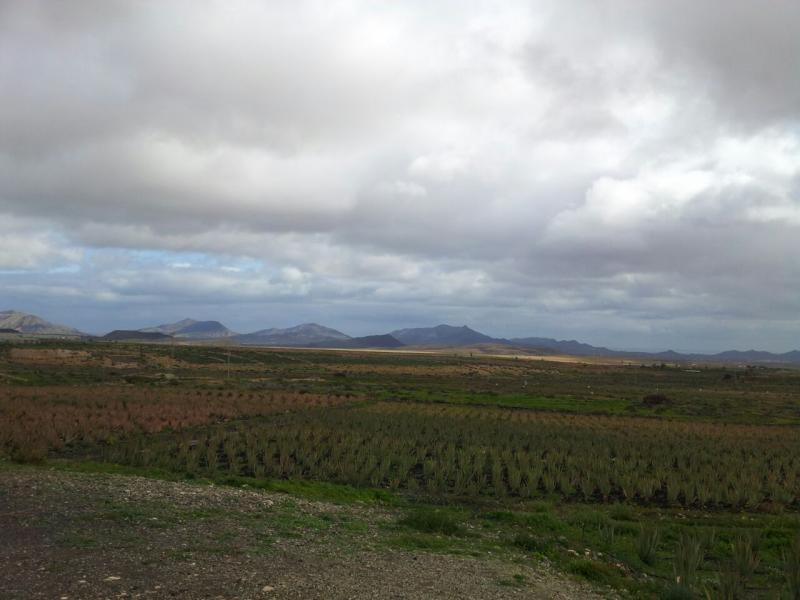 2015/01/18 - Puerto Del Rosario / Fuerteventura - MSC Armonia-uploadfromtaptalk1421609892165-jpg