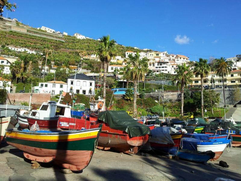 2015/01/20 Funchal - MSC Armonia-img-20150120-wa0096-jpg