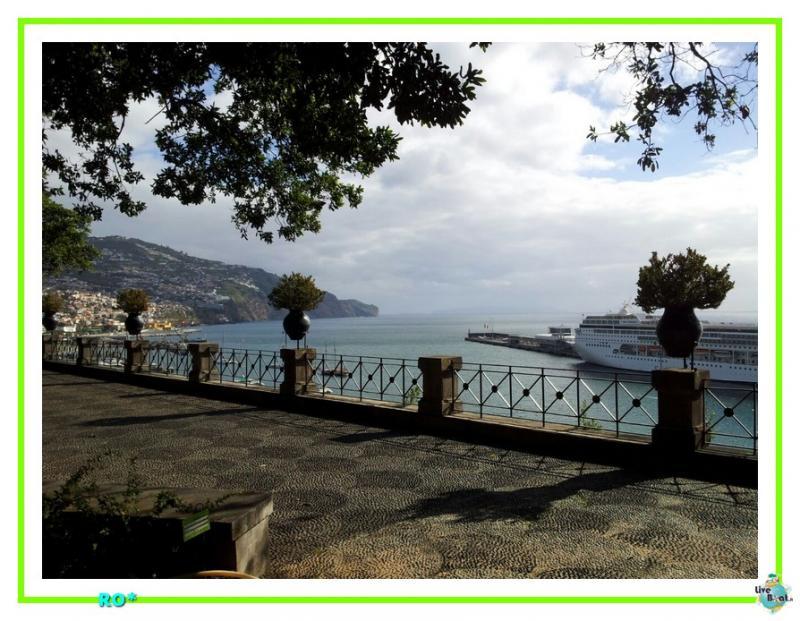 2015/01/21 - Funchal - MSC Armonia-36mscarmonia-vacanzaideale-reinassanceprogramm-msc-crociere-vacanzaisolecanarie-jpg