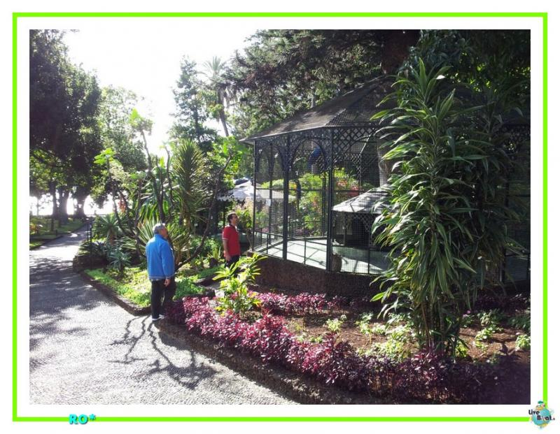 2015/01/21 - Funchal - MSC Armonia-43mscarmonia-vacanzaideale-reinassanceprogramm-msc-crociere-vacanzaisolecanarie-jpg