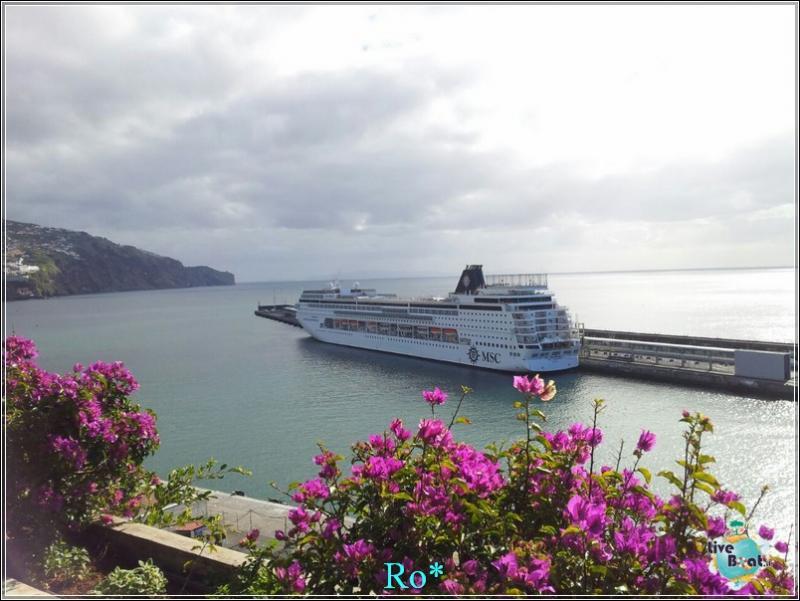 2015/01/21 - Funchal - MSC Armonia-foto-mscarmonia-funchal-direttaliveboat-crociere-14-jpg
