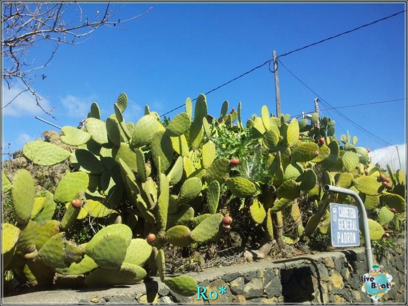 2015/01/22 - Santa Cruz de La Palma - MSC Armonia-foto-mscarmonia-santacruz-direttaliveboat-crociere-30-jpg