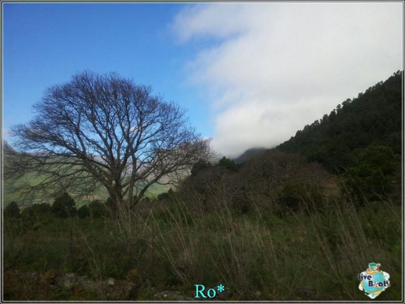 2015/01/22 - Santa Cruz de La Palma - MSC Armonia-foto-mscarmonia-santacruz-direttaliveboat-crociere-32-jpg