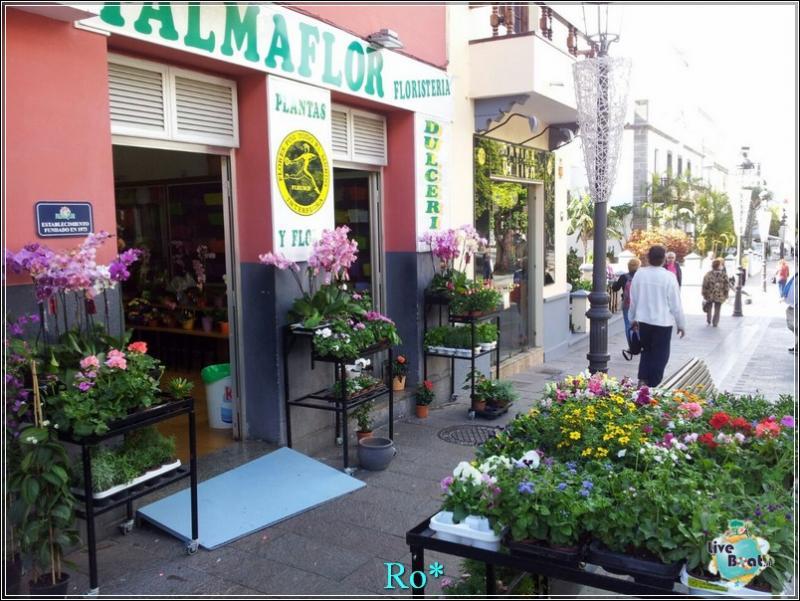 2015/01/22 - Santa Cruz de La Palma - MSC Armonia-foto-mscarmonia-santacruz-direttaliveboat-crociere-41-jpg
