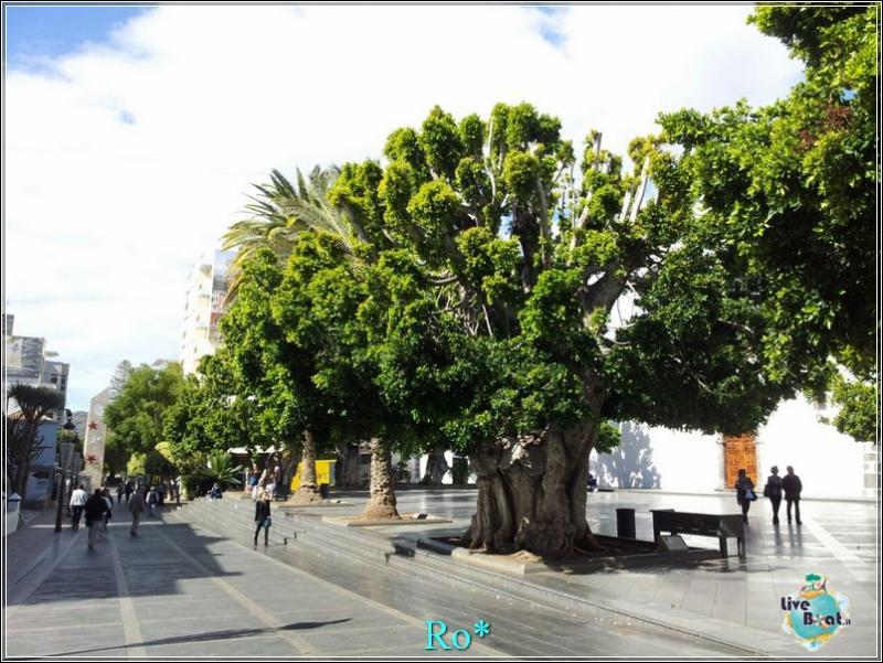 2015/01/22 - Santa Cruz de La Palma - MSC Armonia-foto-mscarmonia-santacruz-direttaliveboat-crociere-47-jpg