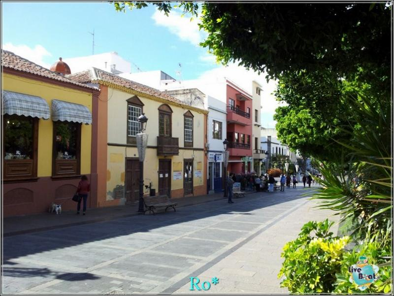 2015/01/22 - Santa Cruz de La Palma - MSC Armonia-foto-mscarmonia-santacruz-direttaliveboat-crociere-49-jpg