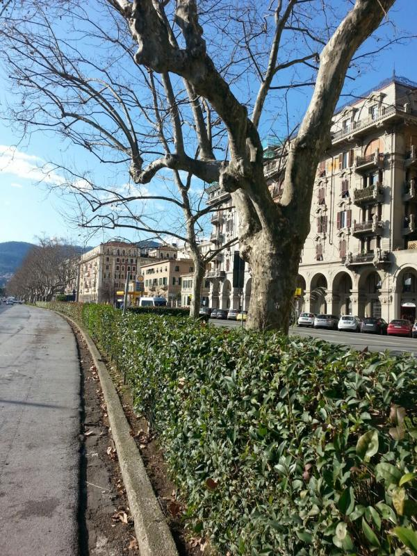 2015/01/23 - La Spezia - Costa Diadema-uploadfromtaptalk1422014413105-jpg