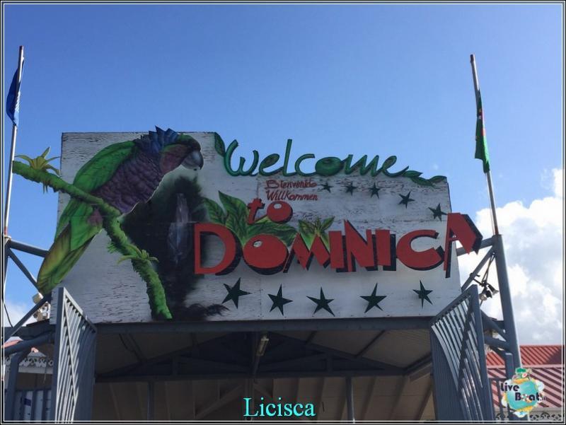 2015/02/03 Celebrity Summit - Roseau - Dominica-foto-celebritysummit-dominica-direttaliveboat-crociere-1-jpg