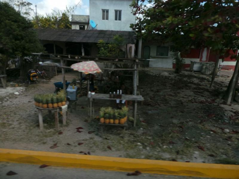 2015/02/17 Costa Luminosa Costa Maya - Messico-uploadfromtaptalk1424208716288-jpg