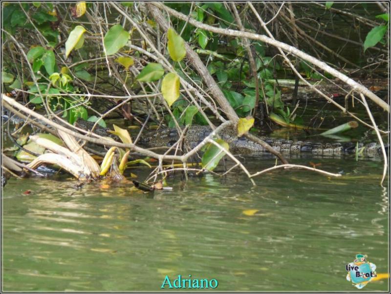 2015/02/18 Costa luminosa Belize - Messico-foto-costaluminosa-belize-direttaliveboat-crociere-42-jpg