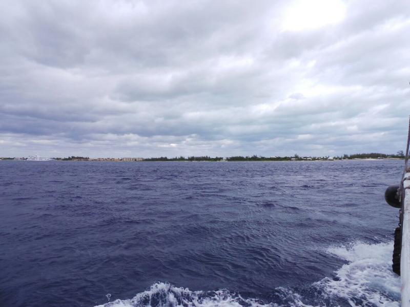 2015/02/20 Costa Luminosa Gran Cayman - Isole Cayman-diretta-grand-cayman-costa-luminosa-2-jpg