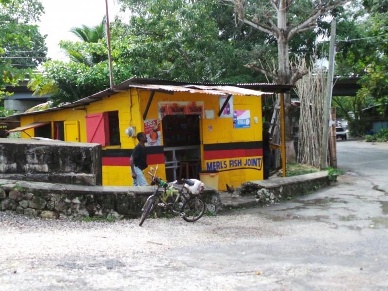 2015/02/21 Costa Luminosa Ocho Rios - Giamaica-tour-ocho-rios-6-jpg