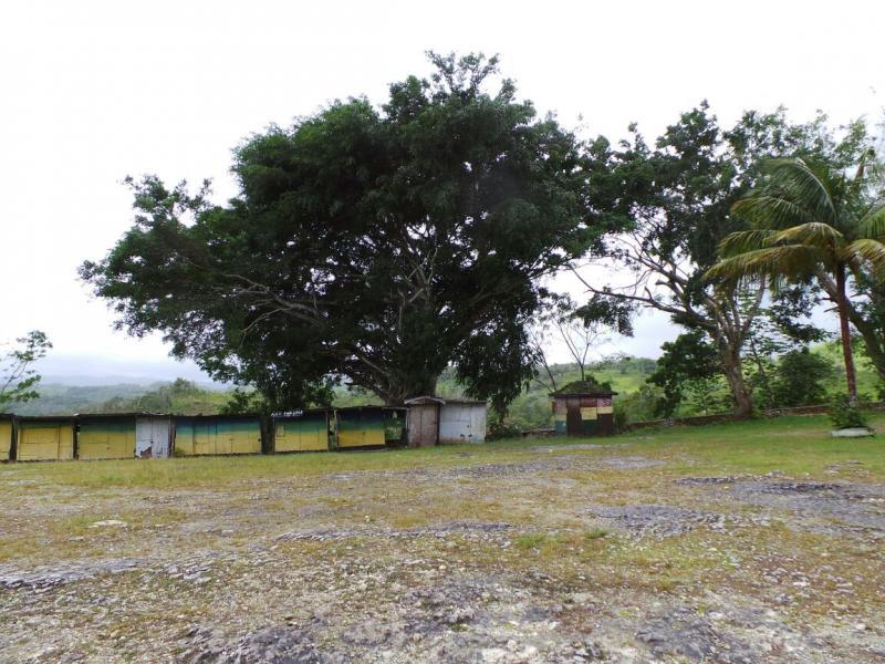 2015/02/21 Costa Luminosa Ocho Rios - Giamaica-tour-ocho-rios-13-jpg