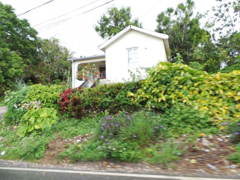 2015/02/21 Costa Luminosa Ocho Rios - Giamaica-tour-ocho-rios-14-jpg