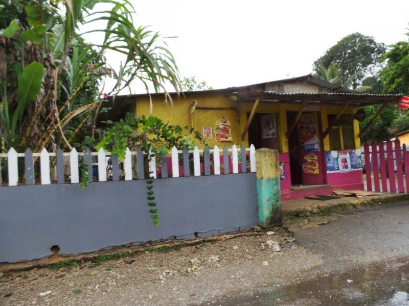 2015/02/21 Costa Luminosa Ocho Rios - Giamaica-tour-ocho-rios-15-jpg