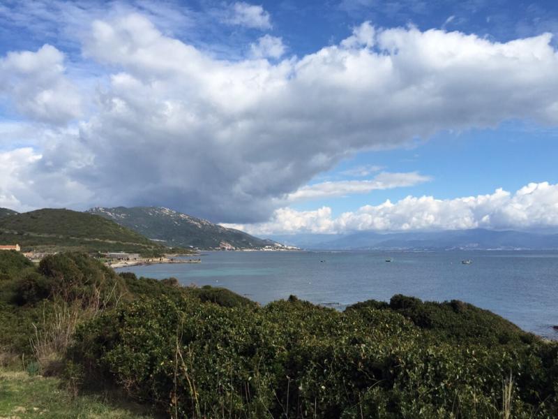 2015/02/27 Ajaccio, Costa Diadema i protagonisti del mare-imageuploadedbytapatalk1425048151-961915-jpg