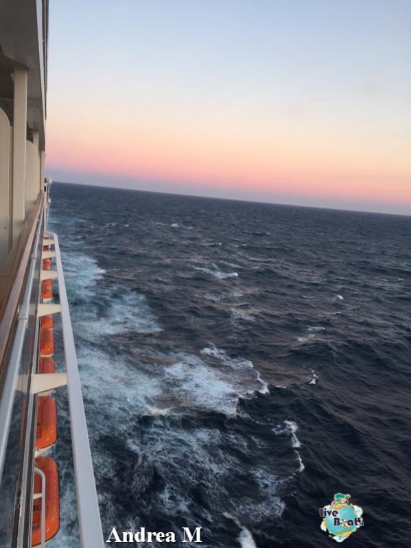 2015/03/05 Navigazione MSC Fantasia-3-foto-msc-fantasia-isole-sole-navigazione-diretta-liveboat-crociere-jpg