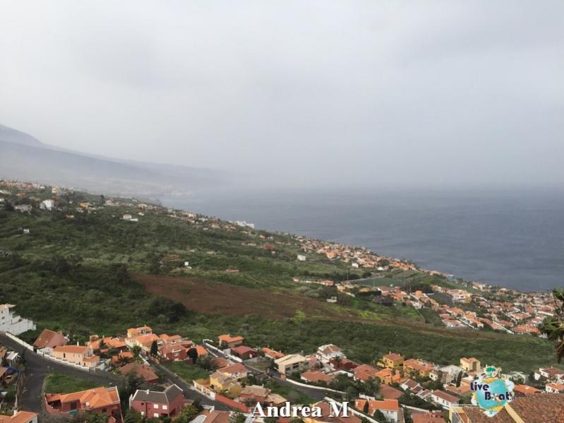 2015/03/08 Tenerife MSC Fantasia-2-foto-msc-fantasia-isole-sole-tenerife-diretta-liveboat-crociere-jpg