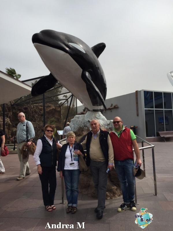 2015/03/08 Tenerife MSC Fantasia-3-foto-msc-fantasia-isole-sole-tenerife-diretta-liveboat-crociere-jpg