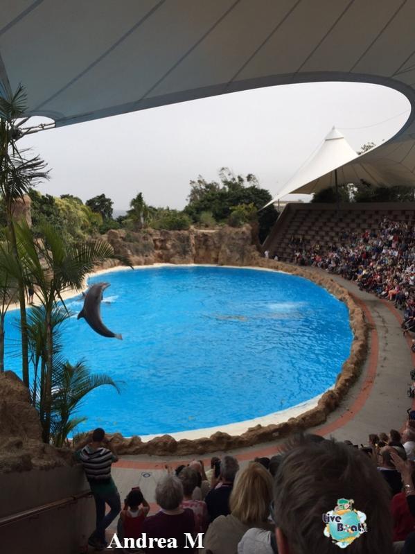 2015/03/08 Tenerife MSC Fantasia-5-foto-msc-fantasia-isole-sole-tenerife-diretta-liveboat-crociere-jpg