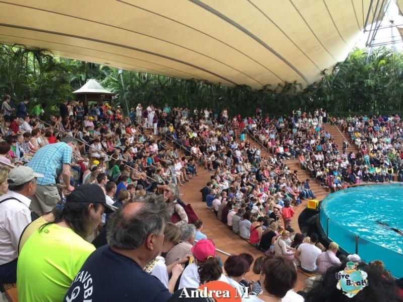 2015/03/08 Tenerife MSC Fantasia-4-foto-msc-fantasia-isole-sole-tenerife-diretta-liveboat-crociere-jpg