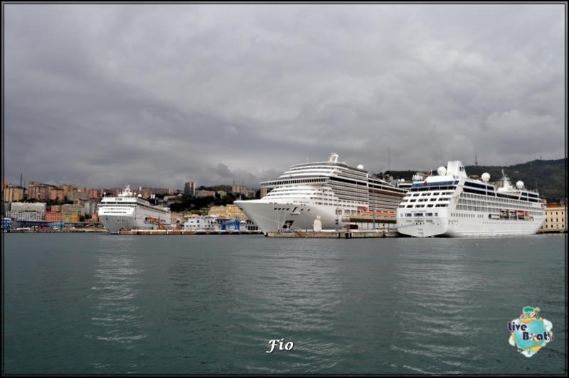 Operazione #maresottosopra Pecora Verde-3foto-escursione-pecoraverde-walewatch-forum-liveboat-jpg