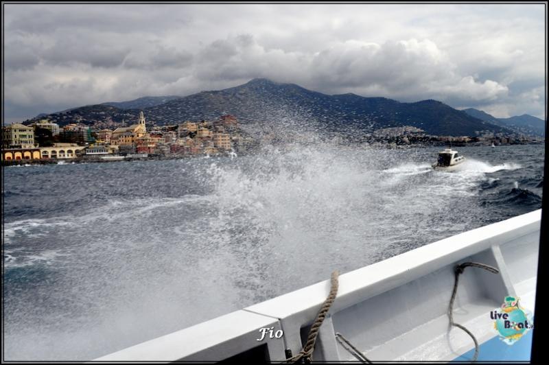 Operazione #maresottosopra Pecora Verde-7foto-escursione-pecoraverde-walewatch-forum-liveboat-jpg