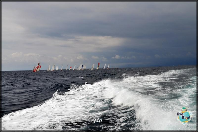 Operazione #maresottosopra Pecora Verde-8foto-escursione-pecoraverde-walewatch-forum-liveboat-jpg