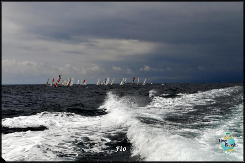 Operazione #maresottosopra Pecora Verde-10foto-escursione-pecoraverde-walewatch-forum-liveboat-jpg