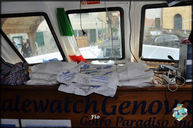 Operazione #maresottosopra Pecora Verde-20foto-escursione-pecoraverde-walewatch-forum-liveboat-jpg
