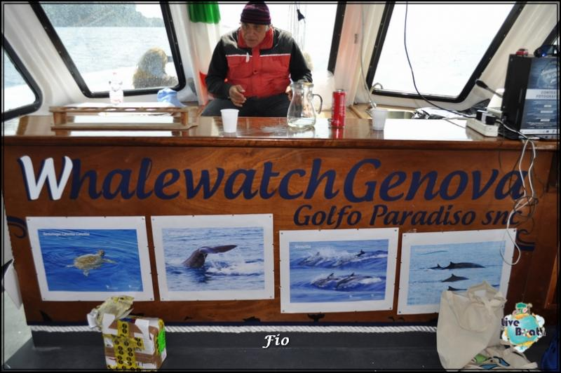 Operazione #maresottosopra Pecora Verde-27foto-escursione-pecoraverde-walewatch-forum-liveboat-jpg