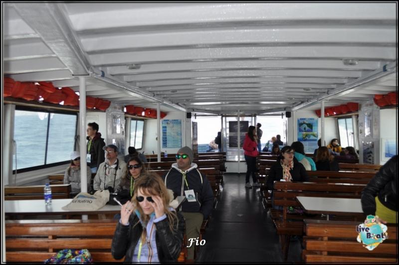 Operazione #maresottosopra Pecora Verde-38foto-escursione-pecoraverde-walewatch-forum-liveboat-jpg