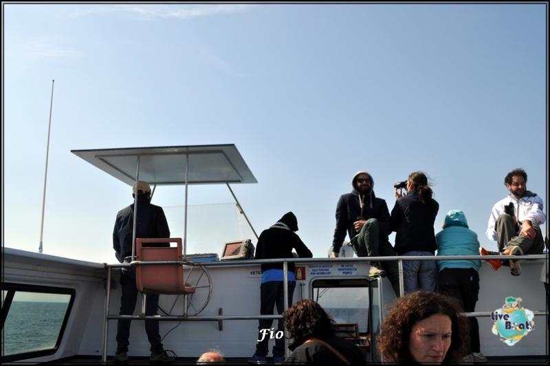 Operazione #maresottosopra Pecora Verde-39foto-escursione-pecoraverde-walewatch-forum-liveboat-jpg