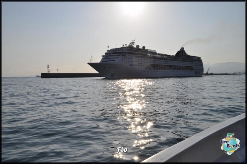 Operazione #maresottosopra Pecora Verde-50foto-escursione-pecoraverde-walewatch-forum-liveboat-jpg