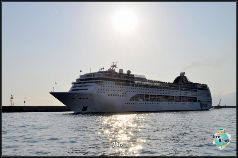 Operazione #maresottosopra Pecora Verde-51foto-escursione-pecoraverde-walewatch-forum-liveboat-jpg