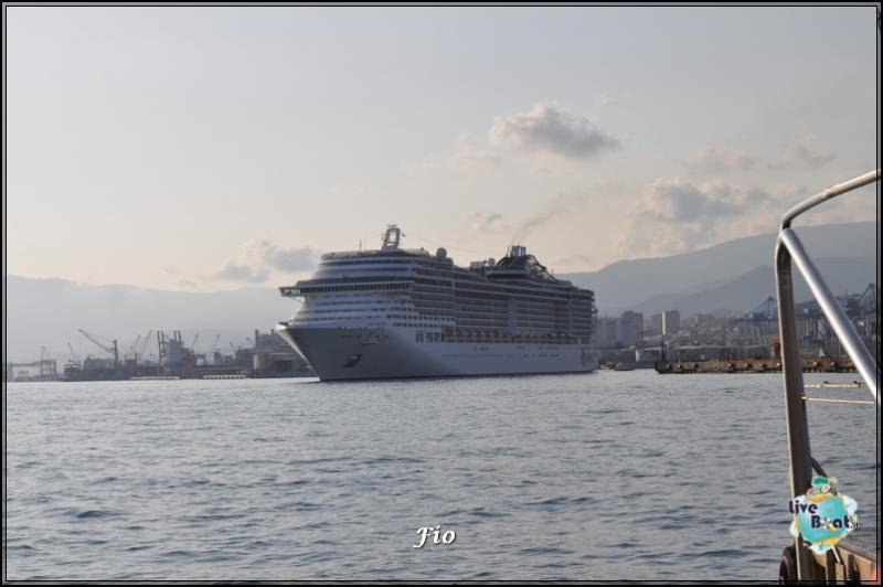 Operazione #maresottosopra Pecora Verde-52foto-escursione-pecoraverde-walewatch-forum-liveboat-jpg