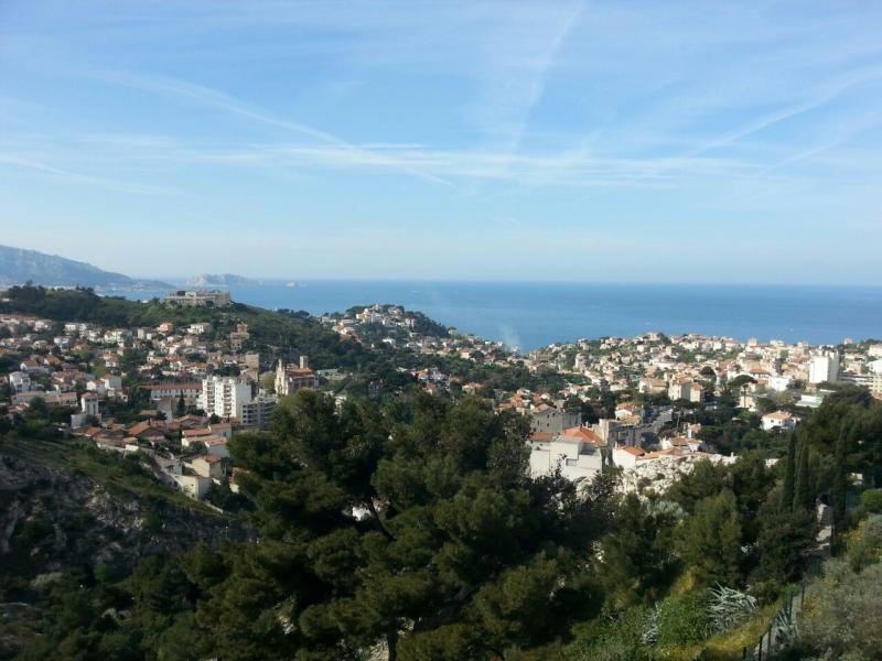 2015/04/18 Marsiglia Costa Favolosa-escursione-faidate-marsiglia-petittrain-liveboat-forum-crociere-6-jpg