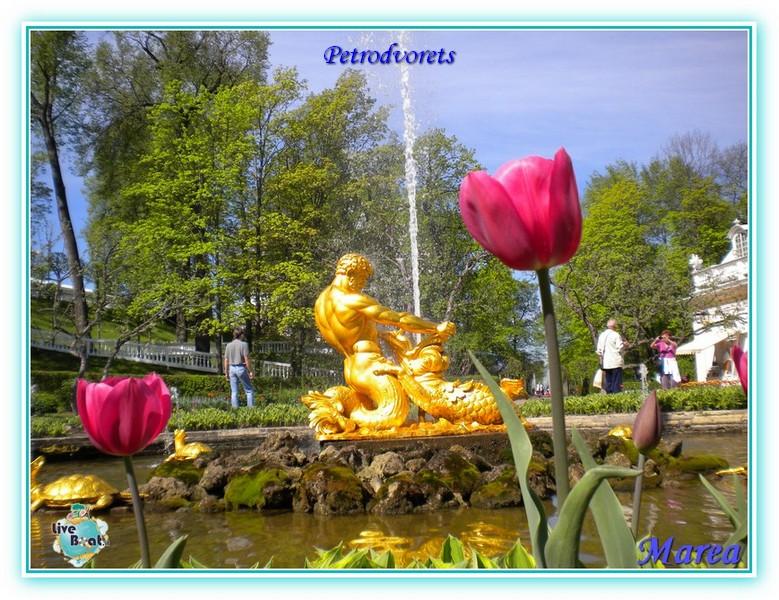 Cosa visitare a San Pietroburgo-crociera-2010-504-jpg