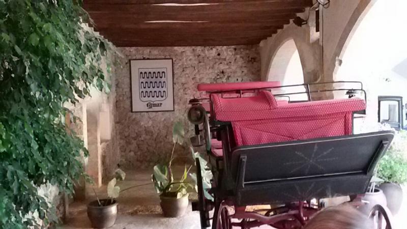Cosa visitare a Palma di Maiorca -Spagna--img-20150519-wa0177-jpg