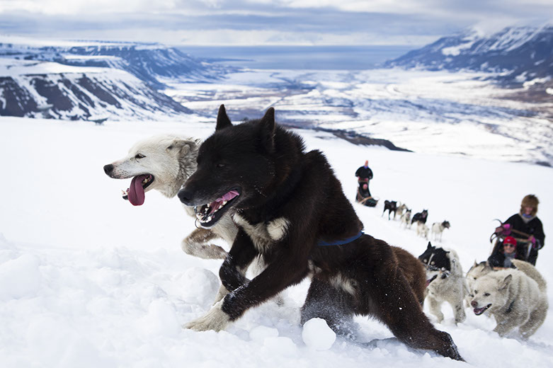 2015/06/07 MSC Splendida Germania, Norvegia, Svalbard and Jan Mayen Islands-img_6943781x521-jpg