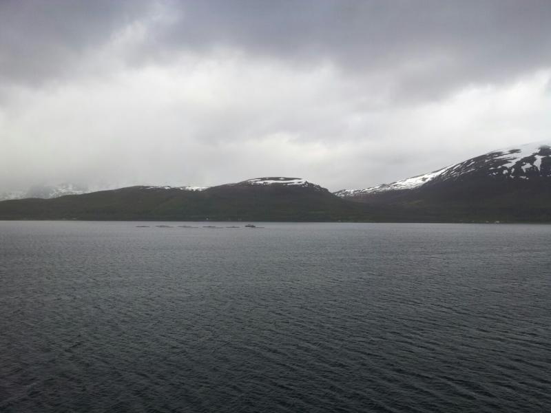 2015/06/11 - MSC Splendida -Tromso-811731390_52002-jpg