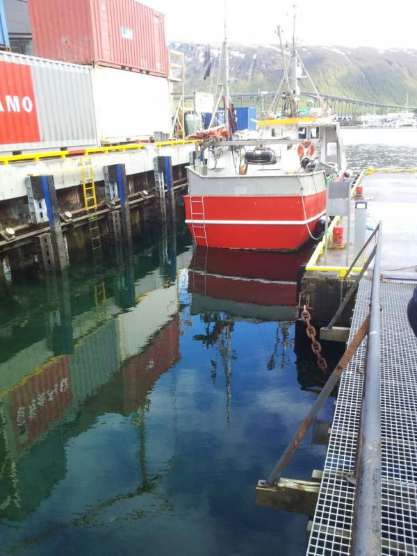 2015/06/11 - MSC Splendida -Tromso-img-20150611-wa0071-jpg