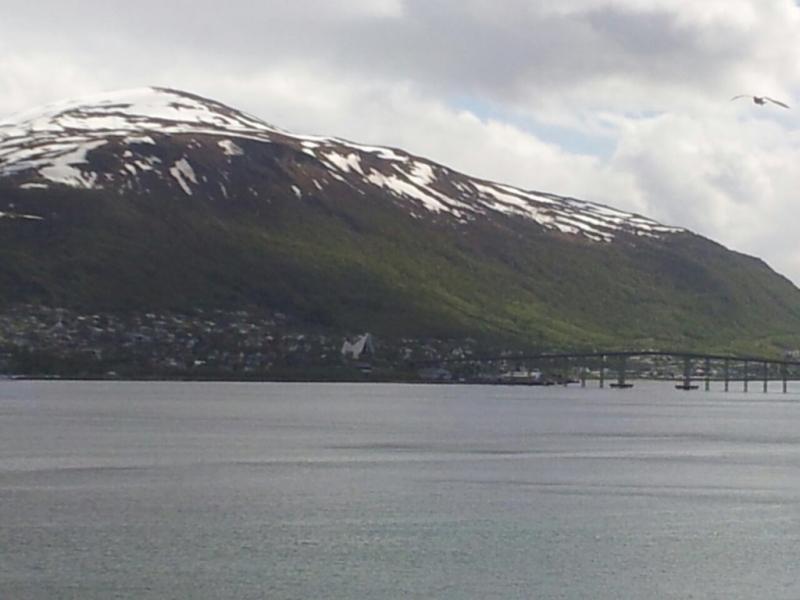 2015/06/11 - MSC Splendida -Tromso-imageuploadedbytapatalk1434029135-085212-jpg