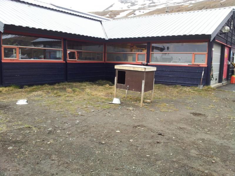 2015/06/13 - MSC Splendida - Longyearbyen-uploadfromtaptalk1434198338178-jpg