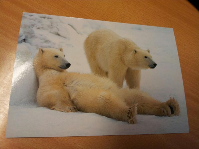 2015/06/13 - MSC Splendida - Longyearbyen-uploadfromtaptalk1434198863547-jpg
