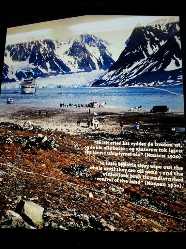 2015/06/13 - MSC Splendida - Longyearbyen-img-20150613-wa0085-jpg