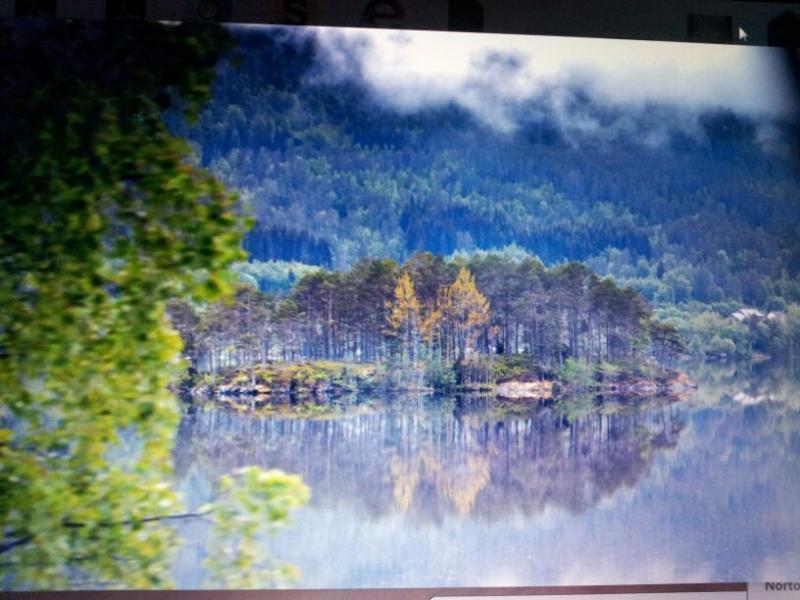 2015/06/18 - MSC Splendida - Hellesylt/Geiranger-img-20150618-wa0100-jpg