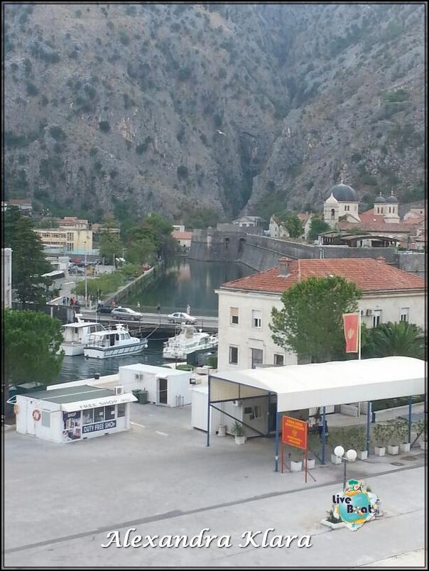 2013/09/02 Kotor  Ryndam-arrivo-kotor-diretta-nave-liveboat-crociere-11-jpg