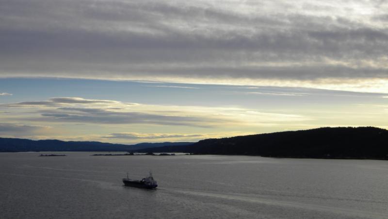 Costa favolosa- fiordi norvegesi- 06/06/--13/06/2015-dscn4145-jpg