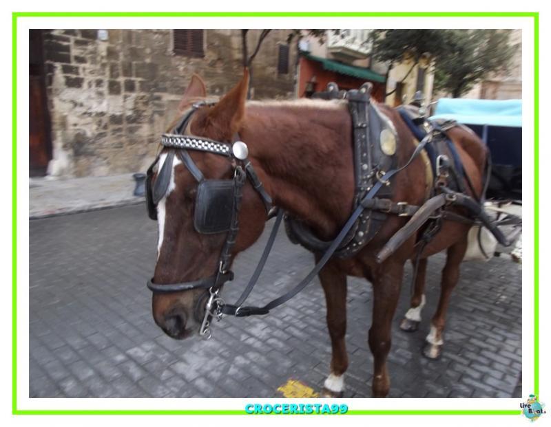 """Costa Fortuna """"Verde Lime"""" 22/26 novembre 2014-dscf1454-jpg"""
